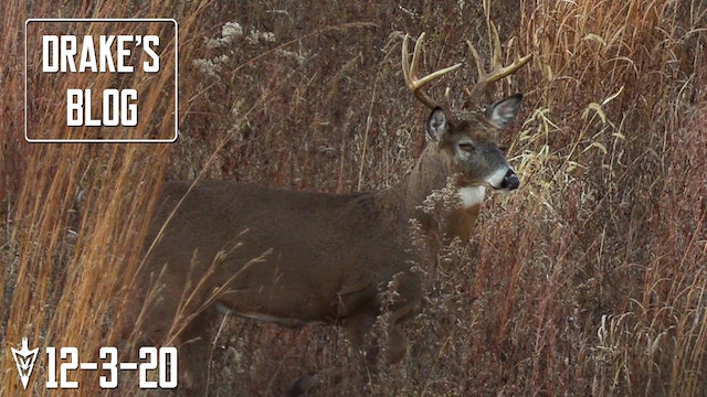 Drake's Blog: Three Days to Get It Done | Late-Season Deer Hunting in Iowa