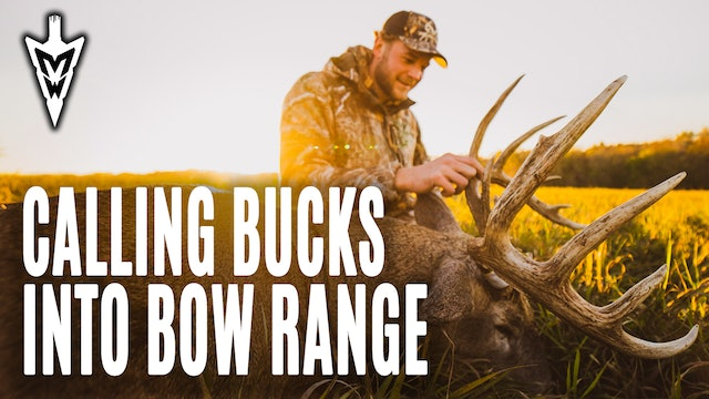 11-9-20: Calling Bucks Into Bow Range | Pre-Rut Deer Hunting | Midwest Whitetail