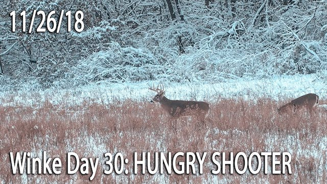 Winke Day 30: Hungry Shooter