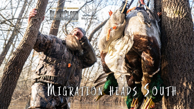 The Migration Moves South: Public Waterfowl Hunting