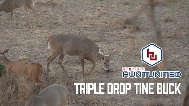 Triple-Drop-Tine Buck in Kansas | Hun...