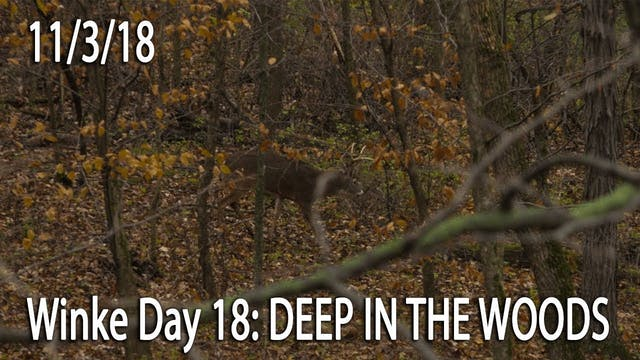 Winke Day 18: Deep In The Woods