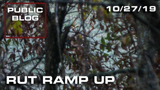 Public Land Blog | Rut Ramp Up