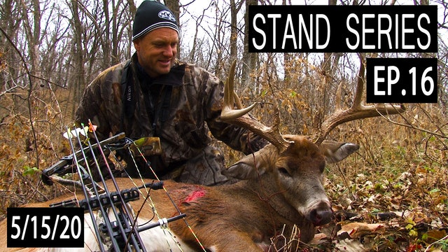Ultimate Bedding Area Stand | Bill Winke Treestand Location Series