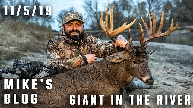 "Mike's Blog: 200"" Giant Dies In River"