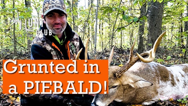 Grunting in an Eastern Shore Piebald Buck | Big Maryland Buck in Rut | Hunt Club