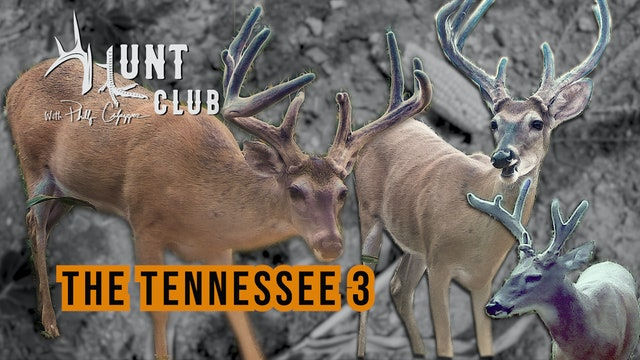 Tennessee Velvet Bucks | Getting Archery Gear Ready for Opening Day | Hunt Club