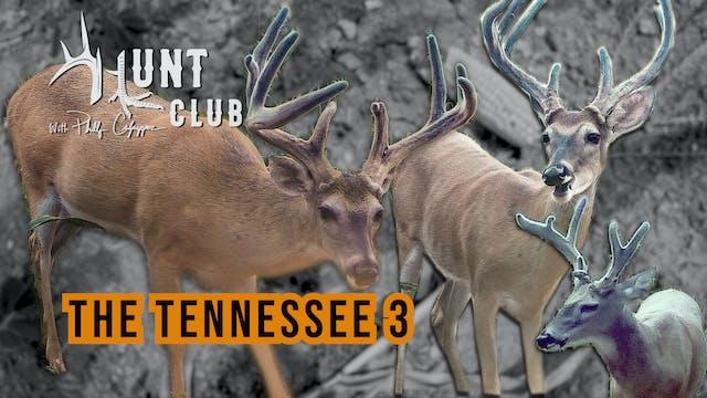 Tennessee Velvet Bucks | Getting Arch...