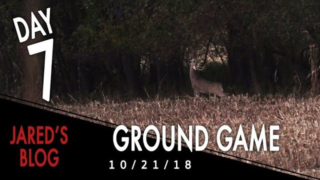 Jared's Blog: Hunting From The Ground