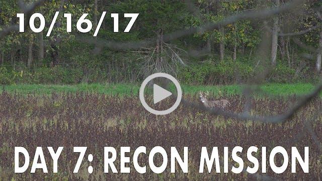 Winke Day 7: Recon Mission