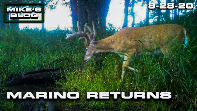 Mike's Blog: The Legendary Marino Ret...