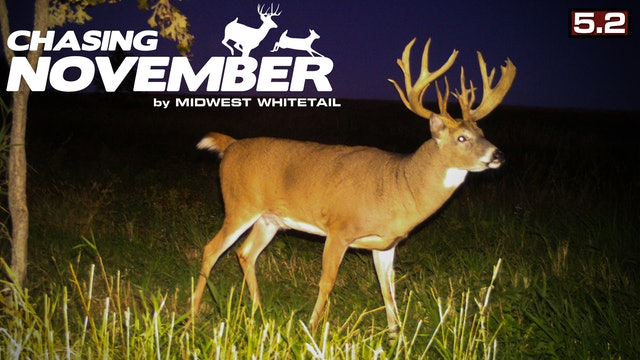 S5.E2. Giant Small-Tract Whitetail | Big Public-Land Buck | Chasing November
