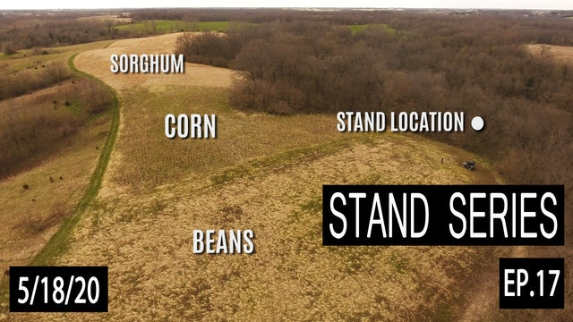Typical Morning Rut Stand Breakdown | Bill Winke Treestand Location Series