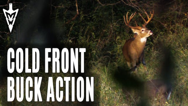 10-7-19: Cold Front Buck Action | Mid...