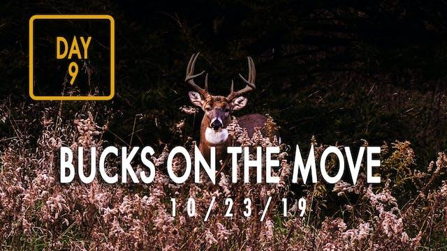 Jared Day 9: Bucks On The Move