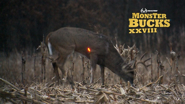Don Kisky's Iowa Archery Buck | Realtree's Monster Bucks