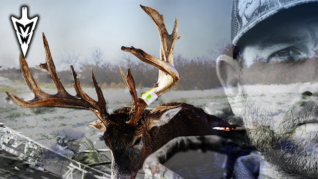 Failed Attempts At a 200-Inch Deer, Looking Back at the Hunt | Midwest Whitetail