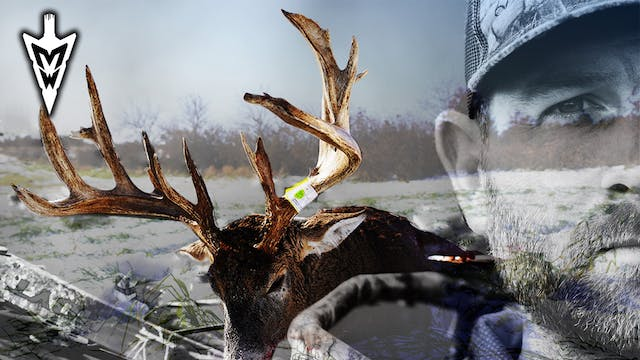 Failed Attempts At a 200-Inch Deer, L...