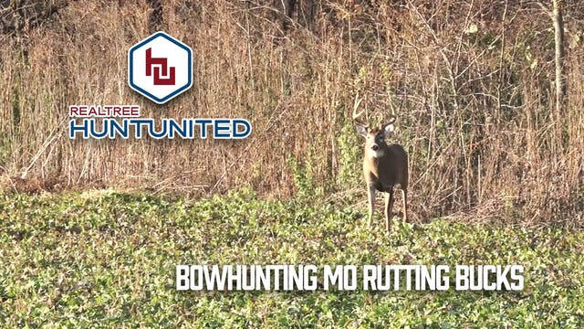 Bowhunting Missouri Bruisers During t...