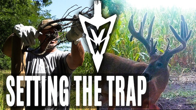 9-3-18: Setting the Trap For an Iowa Giant | Midwest Whitetail