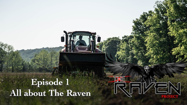 All About The Raven | The Raven Project