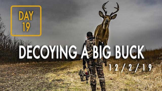 Jared Day 19: Decoying a Big Buck