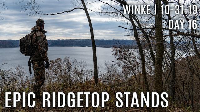 Winke Day 16: Epic Ridge Top Stands
