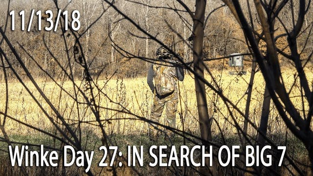 Winke Day 27: In Search Of Big 7