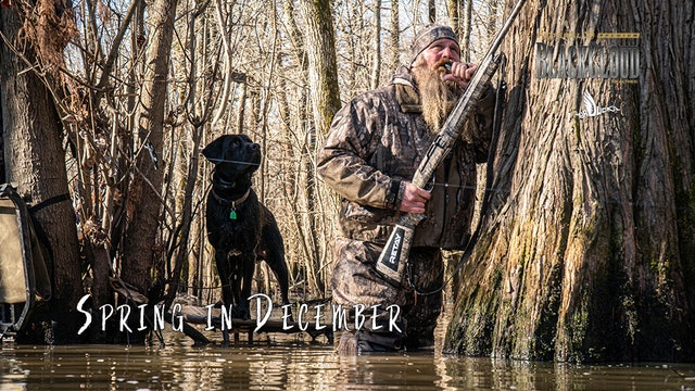 Struggle Bus: Warm-Weather Arkansas Duck Hunting