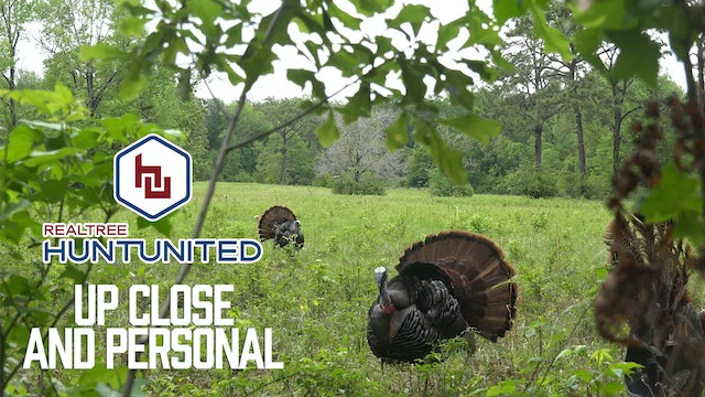 Big-Time, In-Your-Face Gobbler Action   Up Close and Personal   Hunt United
