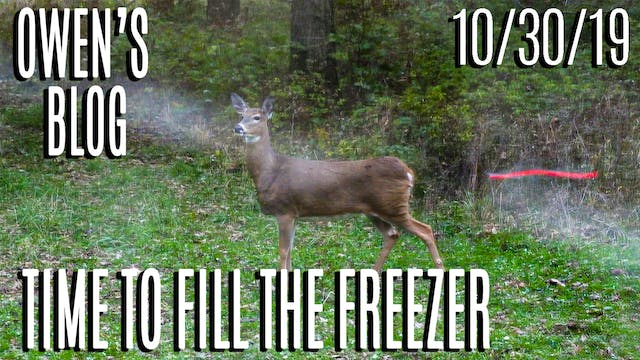 Owen's Blog | Time To Fill The Freezer