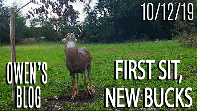 Owen's Blog : First Sit, New Bucks