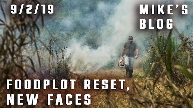 Mike's Blog: Food Plot Reset, New Faces