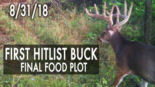 Jared's Blog: First Hitlist Buck, Possible EHD Find