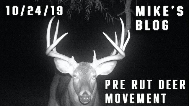 Mike's Blog: Pre Rut Deer Movement