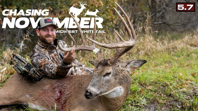 S5.E7. A Rut-Crazed Buck | Wisconsin Brute of a Whitetail | Chasing November