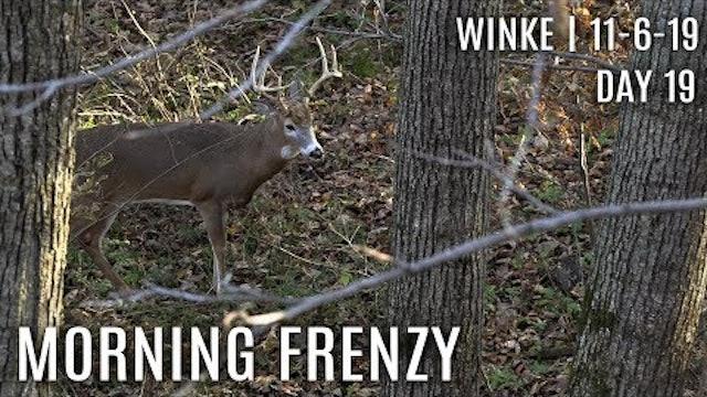 Winke Day 19: Morning Frenzy