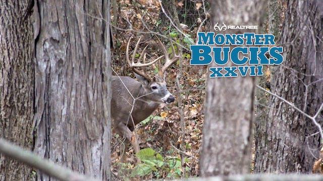Krysten McDaniel Indiana Monster Buck