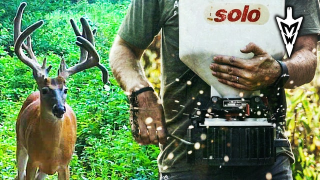 Poor Man Food Plots On Permission | Midwest Whitetail
