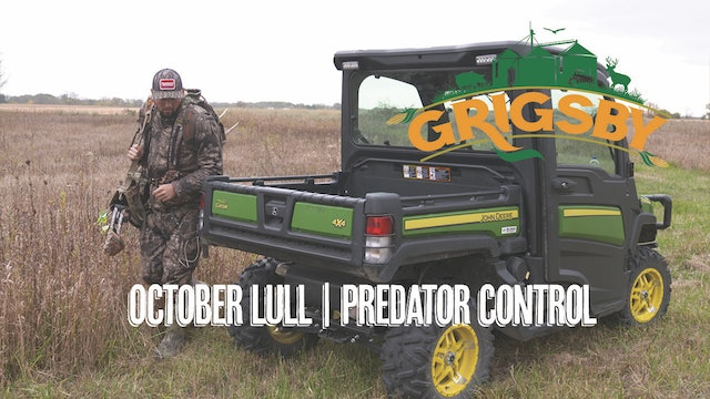 October Lull in Illinois? | Bowhunting Coyotes at the Grigsby | Grigsby