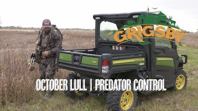 October Lull in Illinois? | Bowhuntin...