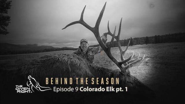 Colorado Elk Bowhunting | Behind the ...