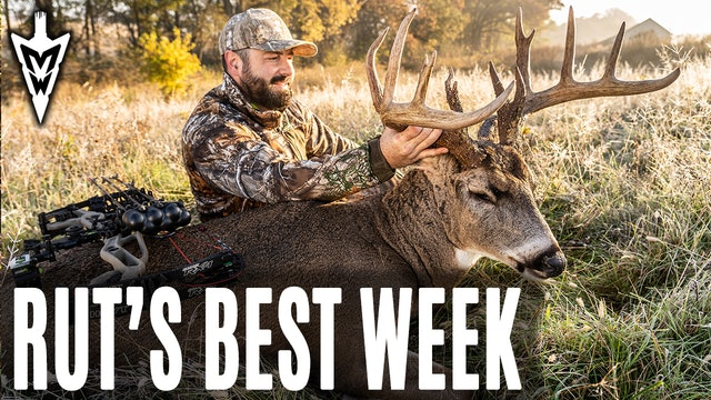 11-4-19: Rut's Best Week | Midwest Whitetail