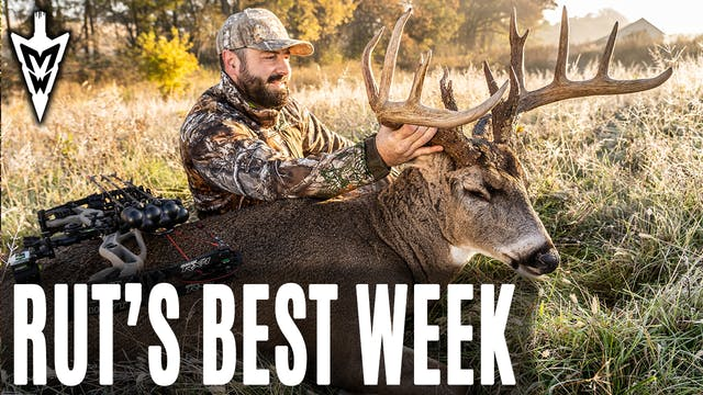 11-4-19: Rut's Best Week | Midwest Wh...