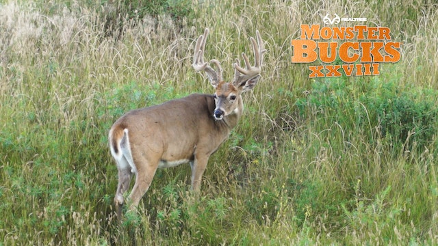 David Blanton's Velvet Wyoming Monster | Realtree's Monster Bucks
