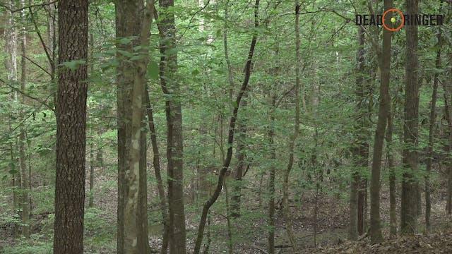 Incredible Mississippi Turkey Hunt | ...