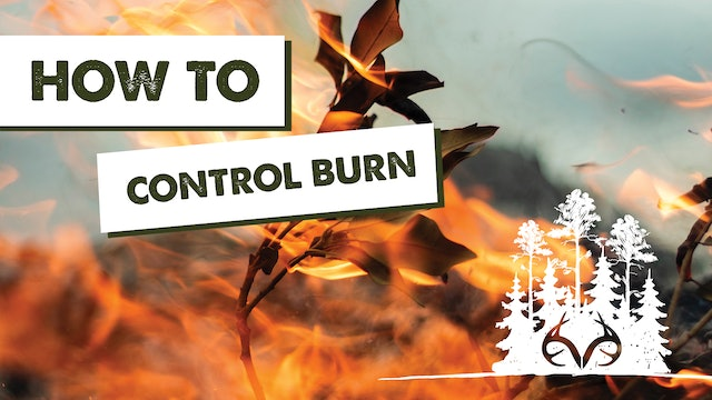 Prescribed Fire | How to Use Controlled Burns for Better Habitat | Pay Dirt