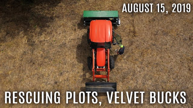 Winke's Blog: No-Till Food Plot Rescu...