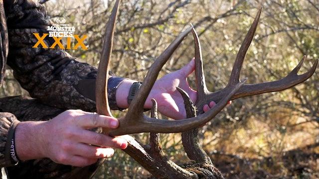 Tyler Jordan's Lone Star State Buck | Monster Bucks 2021