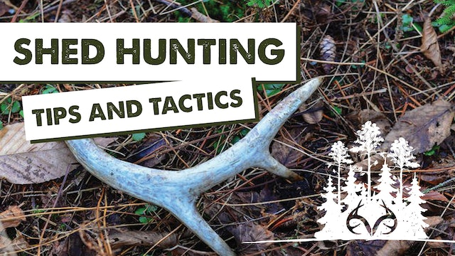 Great Shed Hunting Pro Tips | The Best Places to Find Shed Antlers | Pay Dirt